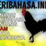 Himpunan Peribahasa Ayam, Yang Lazim dan Yang Tak Pernah Anda Dengar
