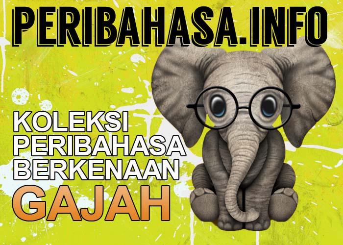 peribahasa gajah